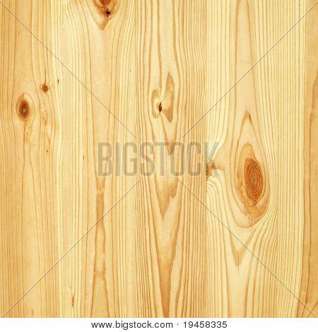 Textura de pared de árbol de pino