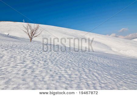 beautiful hillside winter landscape