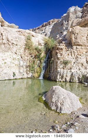 waterfall in an oasis in the Judea dessert (Ein Gedi Nature Reserve, David spring, lower waterfall) Israel