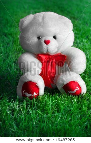 White teddy bear with the words I Love You written on its red paws