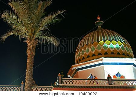 The Arabian architecture and palm in night time