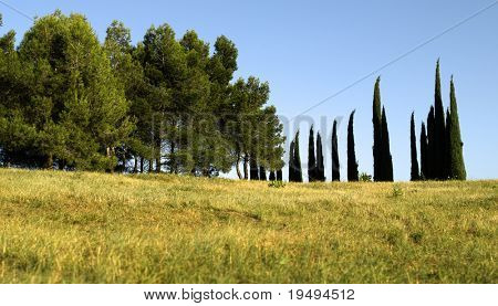 France, Typical landscape of southern France near Carcassone