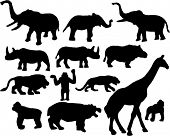 picture of zoo animals  - wild and zoo african animals silhouette - JPG