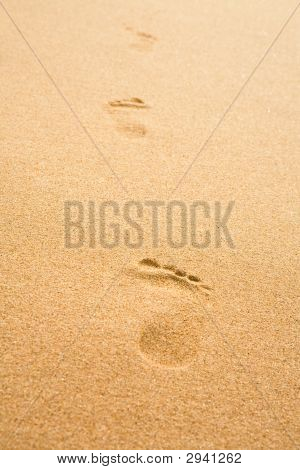 Traces On Sand