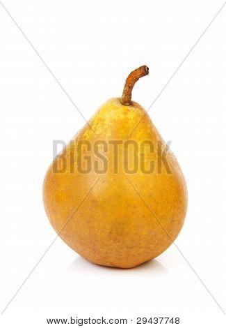 One Bulbous Yellow Pear