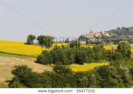 Landschaft in Umbrien bei todi