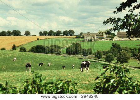 Countryside Near Burford, Oxfordshire, England