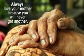 Conceptual Motivational Quote- Always Love Your Mother Because You Will Never Get Another. With Moth poster