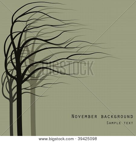 November Trees Background