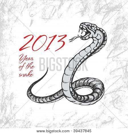 Snake Symbol 2013
