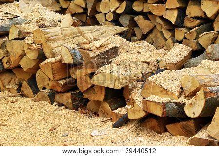 Holz im Sägewerk