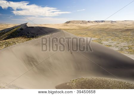 Dunes at Bruneau Idaho