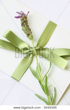 Lovely Lavender Letter