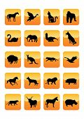 Animals Icons poster