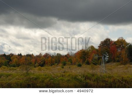 Rural Autumn