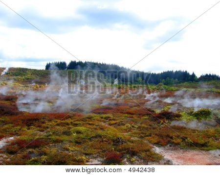 Geothermal Activity Of Hells Gate, New Zealand