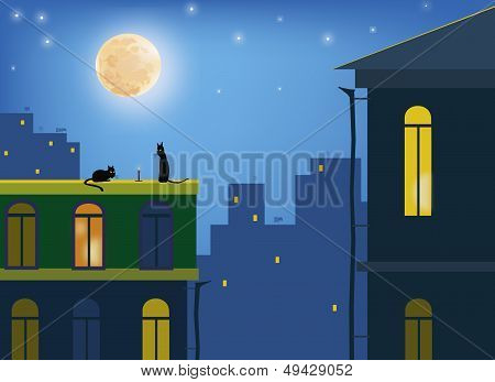 Cats .Cats in the moonlight on the roofs of the city