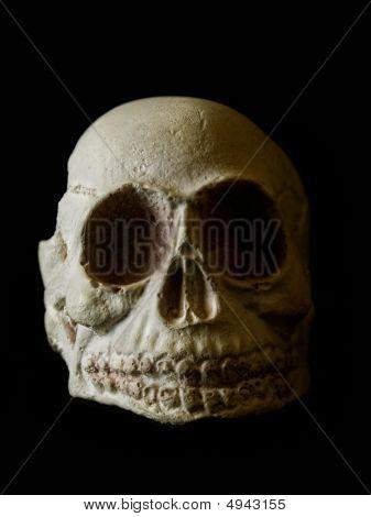 Skull On Black