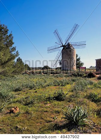 Windmill In El Pilar De La Mola, Formentera