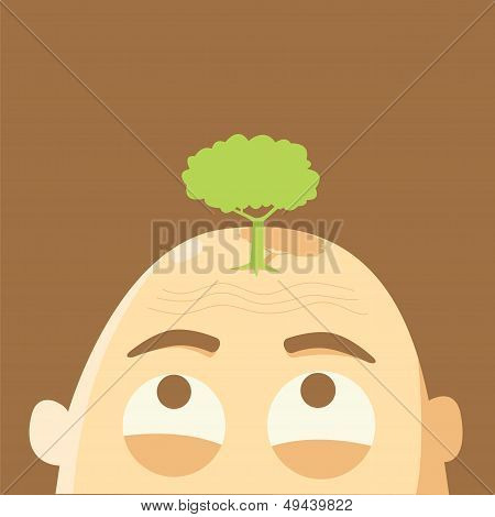 Tree On Glabrous Head