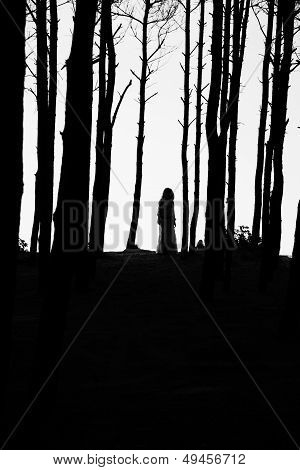 Silhouette Woman Between Trees