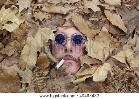 Mister Fall Season