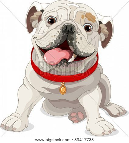 Illustration of English bulldog with red collar