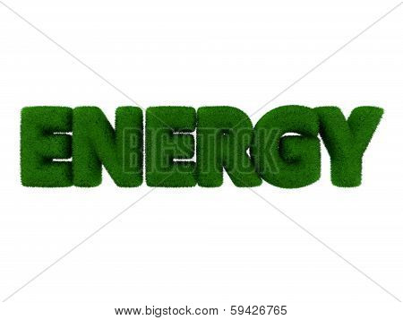 Energy Grass Word