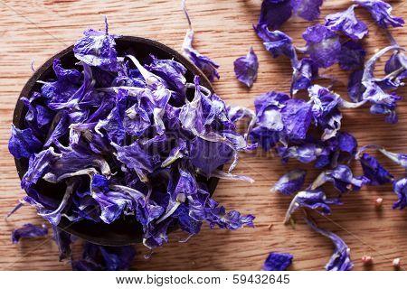Dried Larkspur Petals