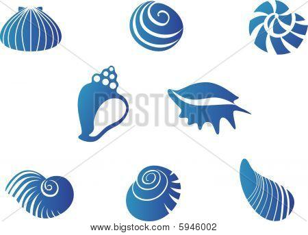 Set of blue seashells