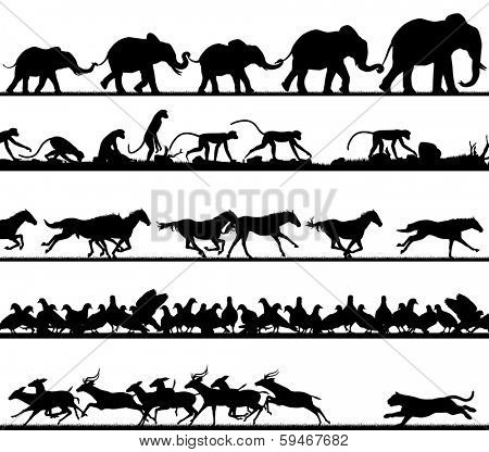 Set of animal silhouette foregrounds of elephants, monkeys, horses, pigeons and a tiger chasing deer