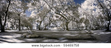 surreal infrared landscape with trees and park