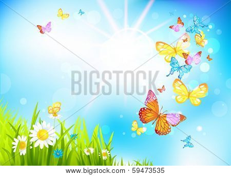 Vector summer background with flowers and butterflies. Positive summer illustration.