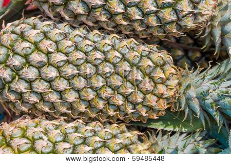 Fresh pineapple pile ready for sale