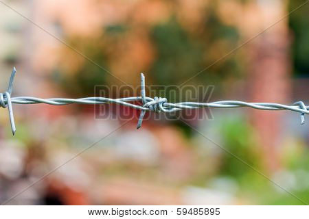 Barbed wire against nature background
