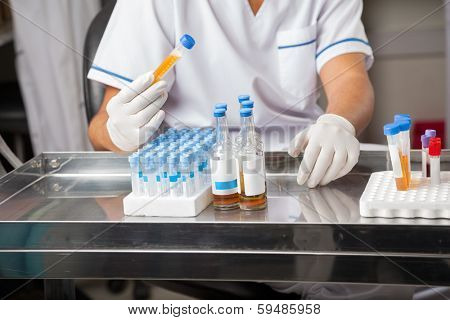 Midsection of male researcher analyzing sample in test tube at laboratory