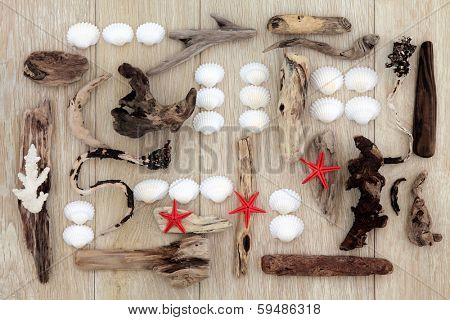 Sea shell and driftwood abstract design with red starfish over old oak background.