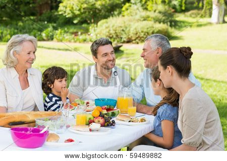 Side view of an extended family having lunch in the lawn