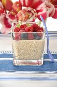 Creamy quinoa milk pudding with fresh berries