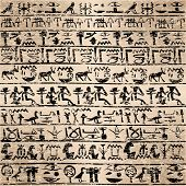image of hieroglyph  - Grunge background with Egyptian hieroglyphs - JPG