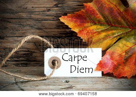 Autumn Label With Carpe Diem