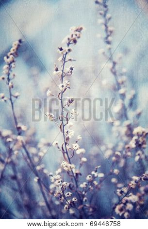 Blue floral background, little gentle flowers, beautiful natural mobile screenrsaver, vintage style image, flowery wallpaper