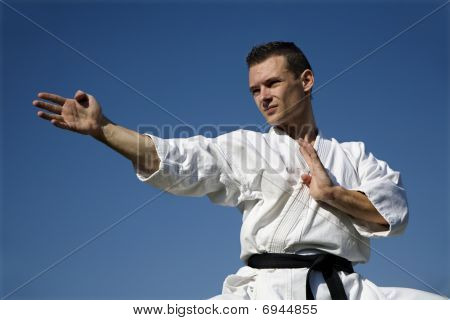 training of world champion in karate - kata