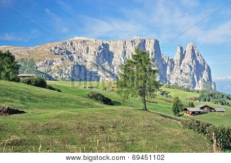 Schlern,Seiser Alm,South Tyrol,Italy