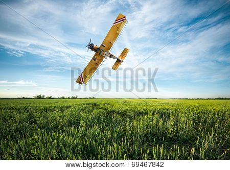 flying yellow plane sprayed crops in the field