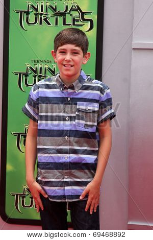 LOS ANGELES - AUG 3:  Diego Velazquez at the Teenage Mutant Ninja Turtles Premiere at the Village Theater on August 3, 2014 in Westwood, CA