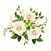 stock photo of english rose  - Vector bouquet of white roses and freesia flowers and green leaves on a white background - JPG