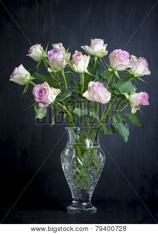 Pink roses on a black background
