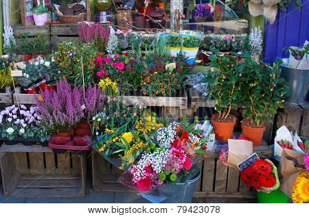 Flowers Sale