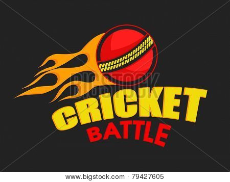 Red ball in fire with stylish text Cricket Battle, can be used as poster or banner design.